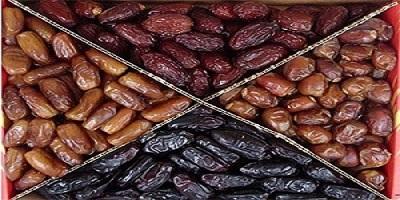 Iranian date cultivars